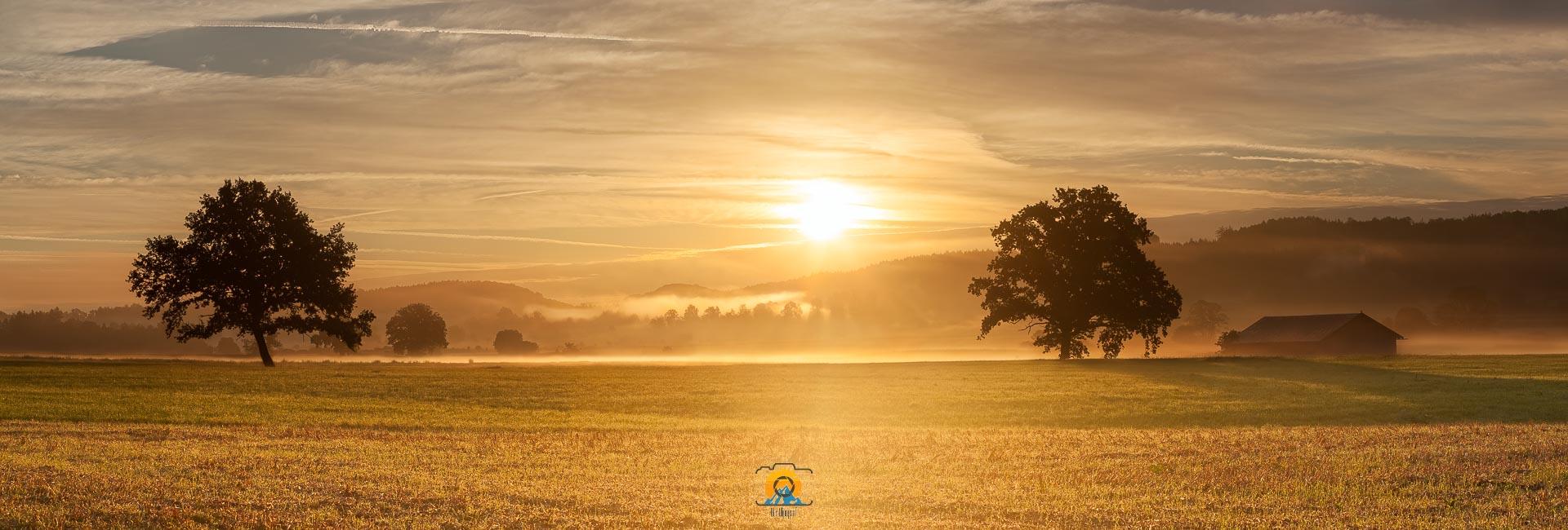 Morgennebel bei Seefeld