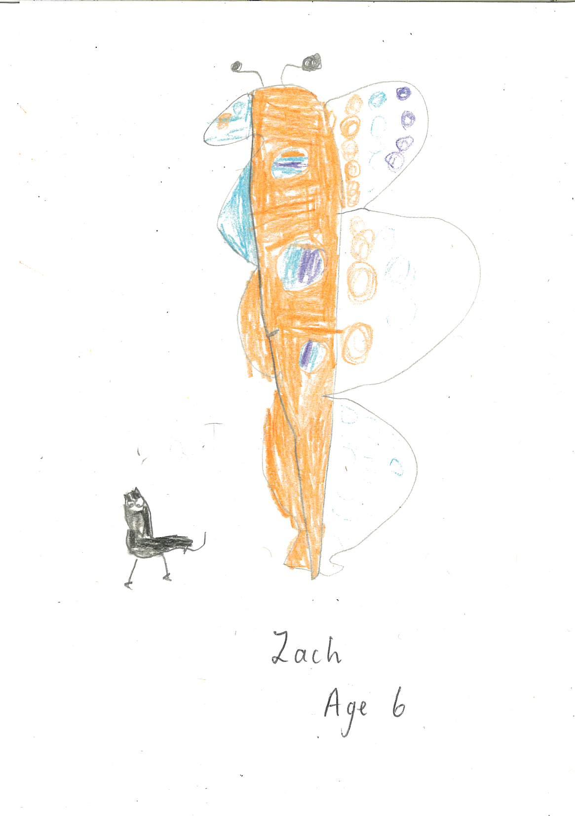 Zach (6)