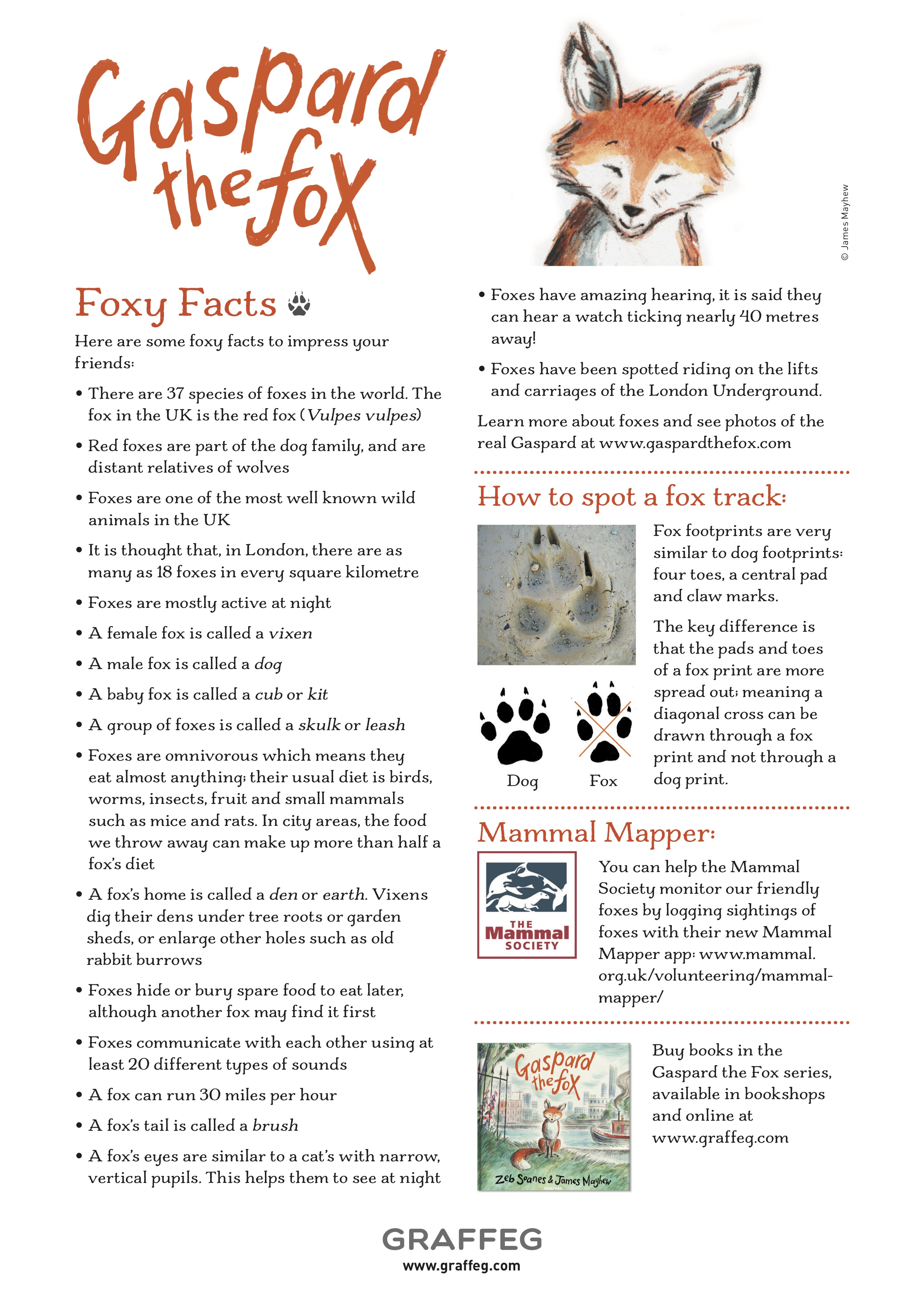 FOXY FACTSHEET - Download and print this poster full of foxy facts for your home or classroom