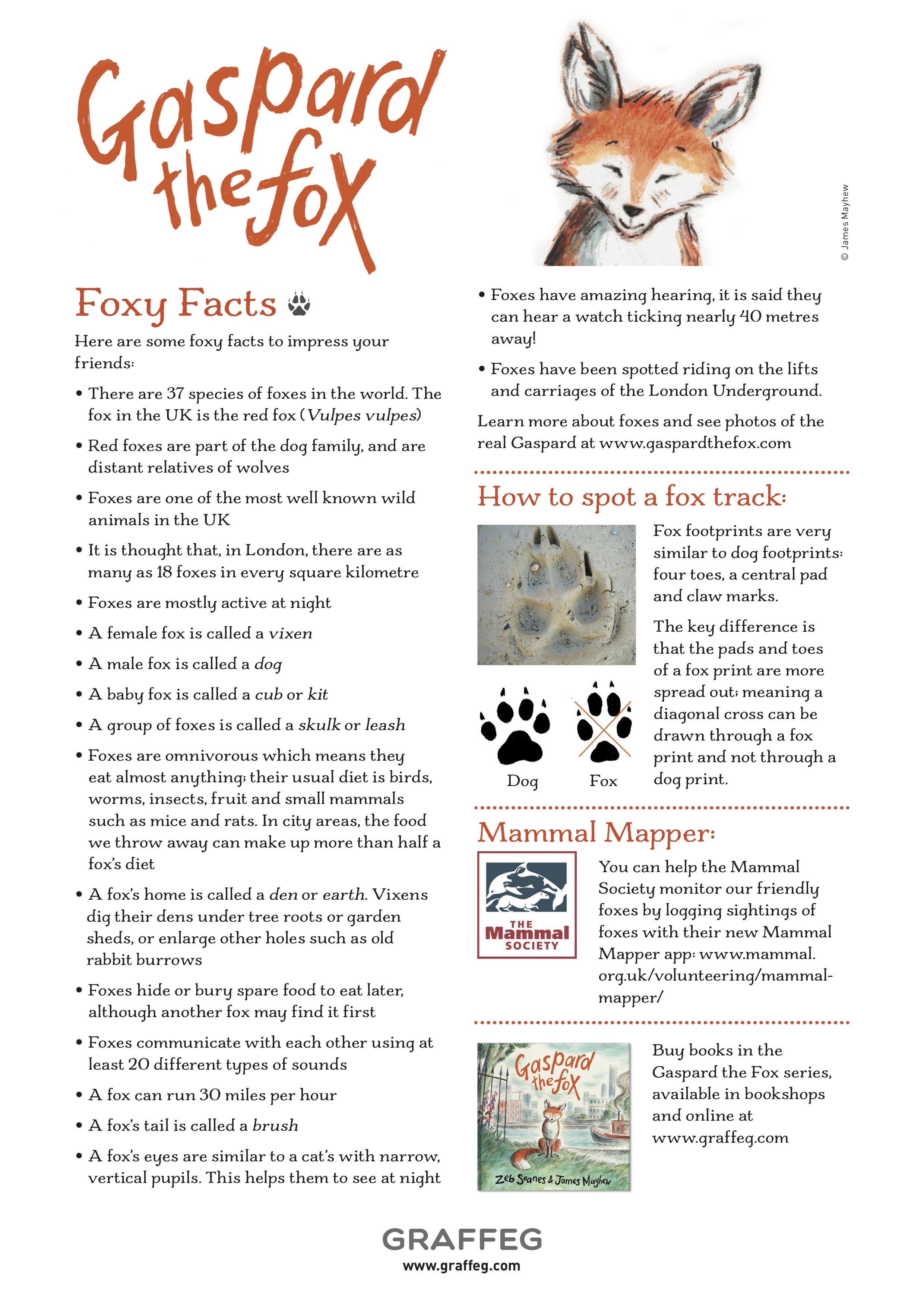 Gaspard Fox Facts (jpg).jpg