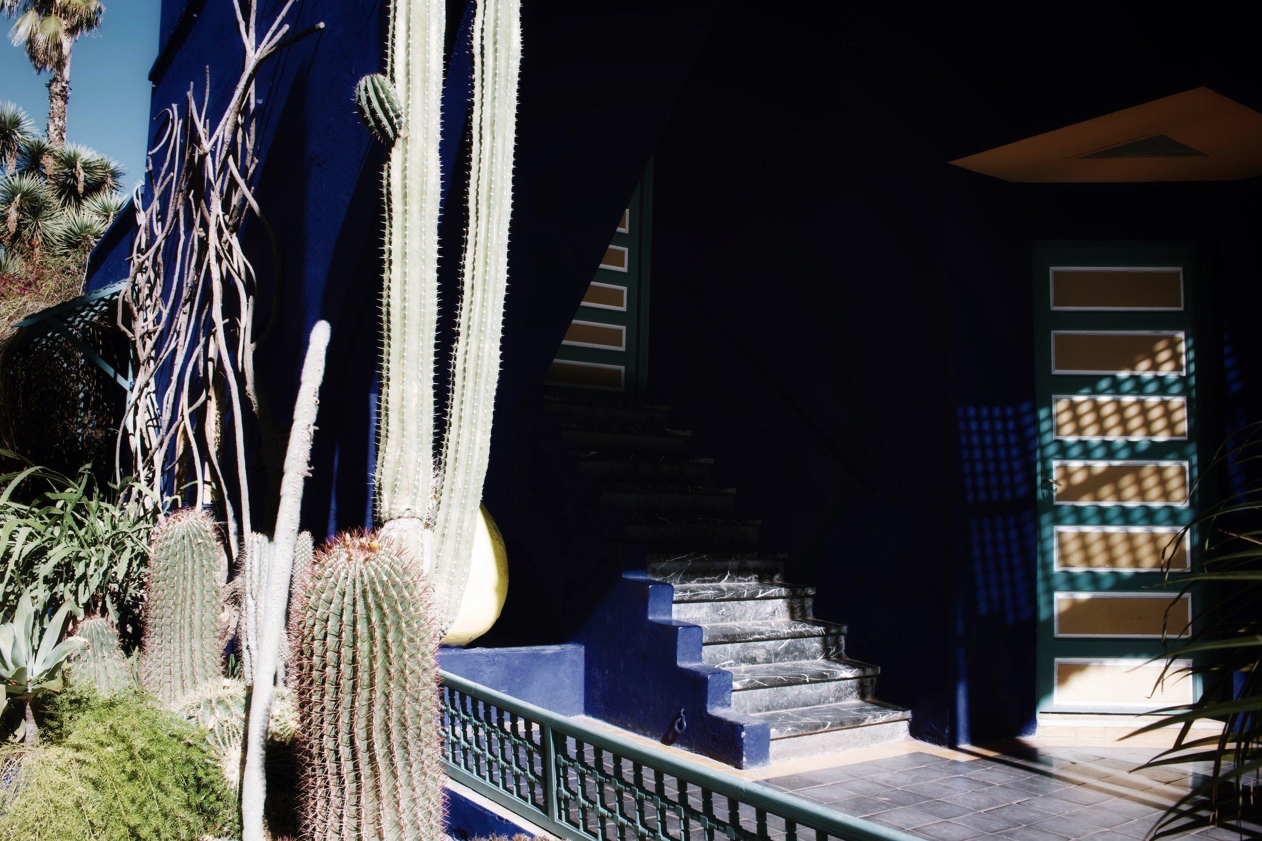 jardin majorelle marrakech-5.jpg