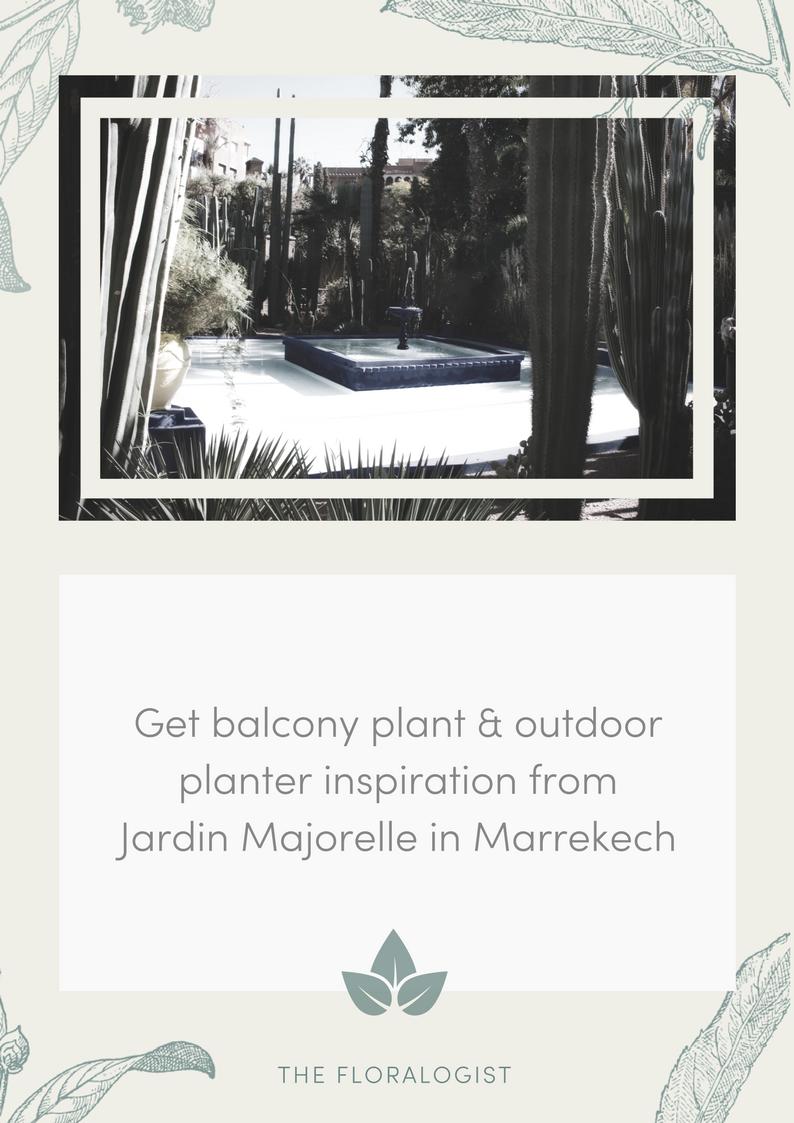 Balcony plant decor inspiration Jardin Majorelle.png