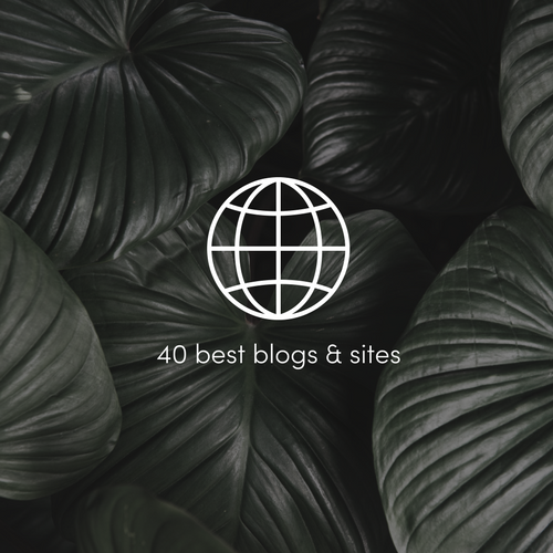 40 best indoor plants blogs and sites.png