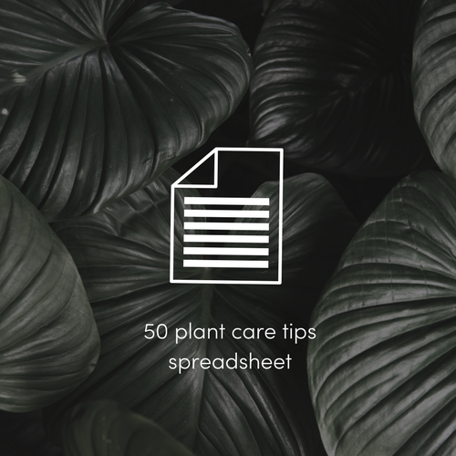 50 plant care tips spreadsheet.png