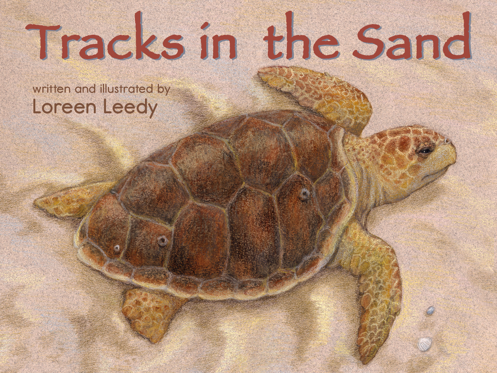 Click cover image to view a bundle of sea turtle life cycle educational resources including the digital edition of  Tracks in the Sand!