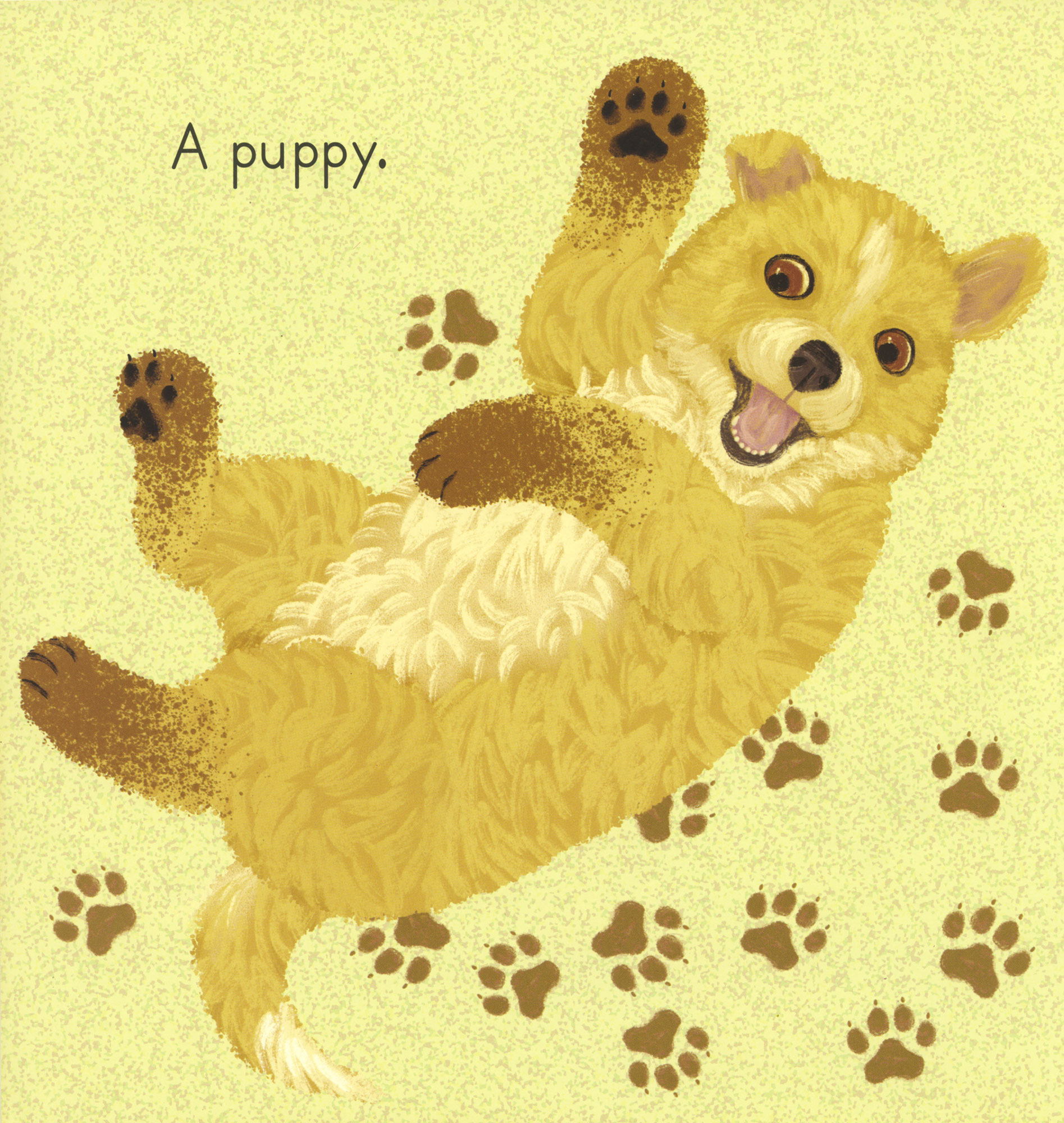 A puppy walks in the mud, that's who!