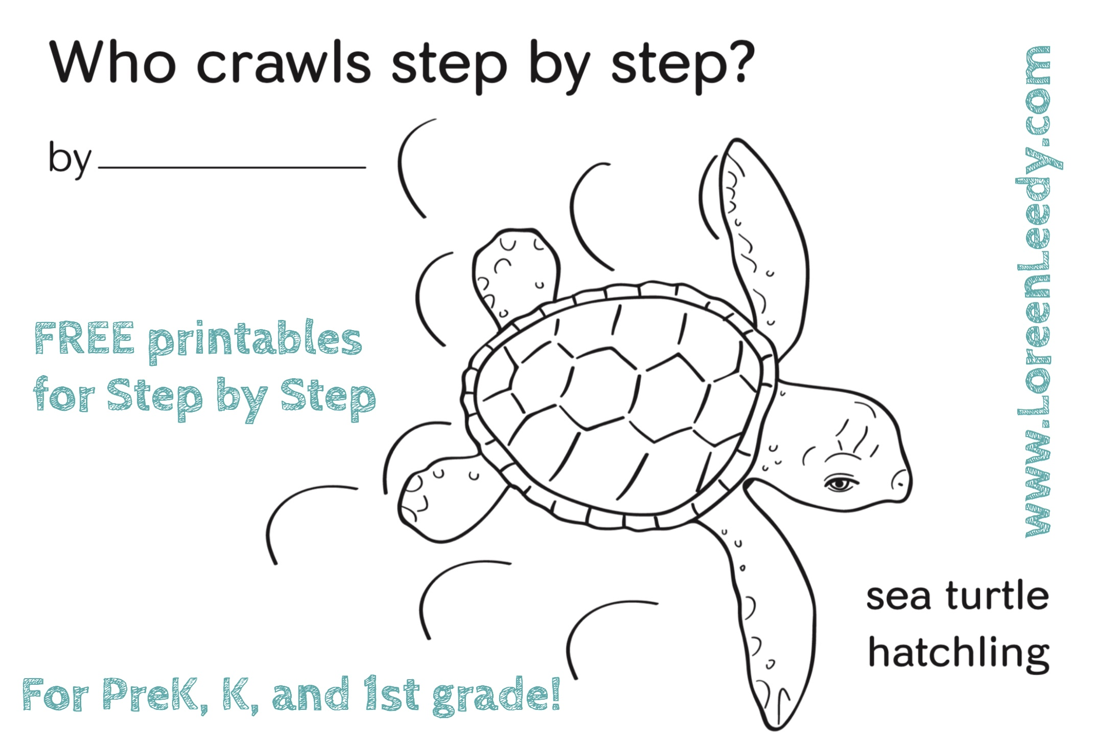 A baby sea turtle coloring page extension for the picture book  Step by Step  by Loreen Leedy