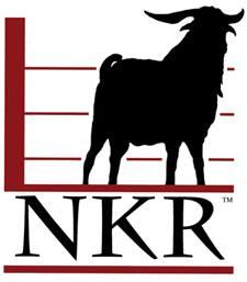 NKR.jpg