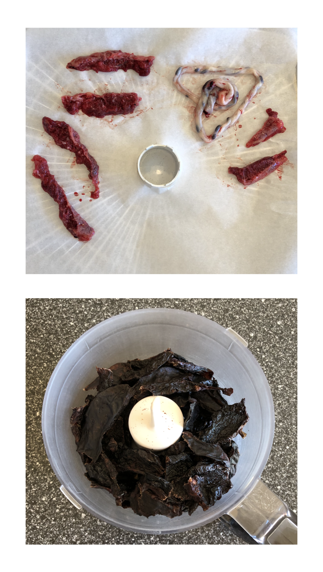Top: raw placenta strips and an umbilical cord go into the dehydrator  Bottom: dehydrated placenta strips come out and are ready to be ground to powder