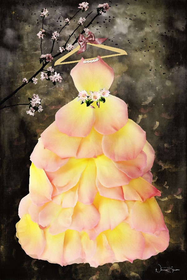 A Dress Of Roses, Flower Dress, Poetry Book
