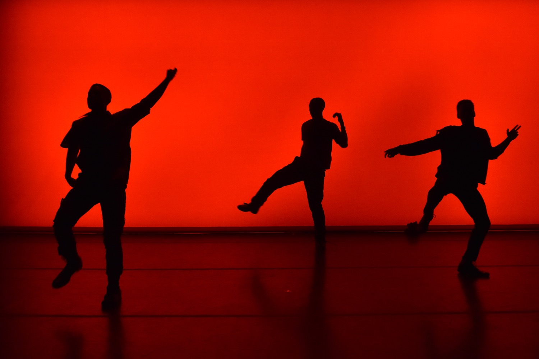 Dancelight 2016 for web 24138874229_426c4d9504_o copy.jpg