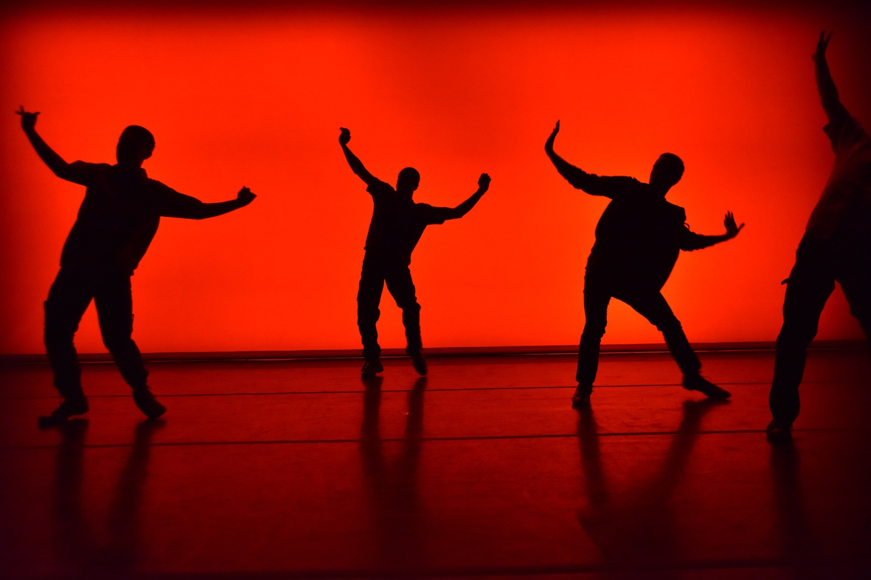 Dancelight 2016 for web 24506640455_68104428dd_o copy.jpg