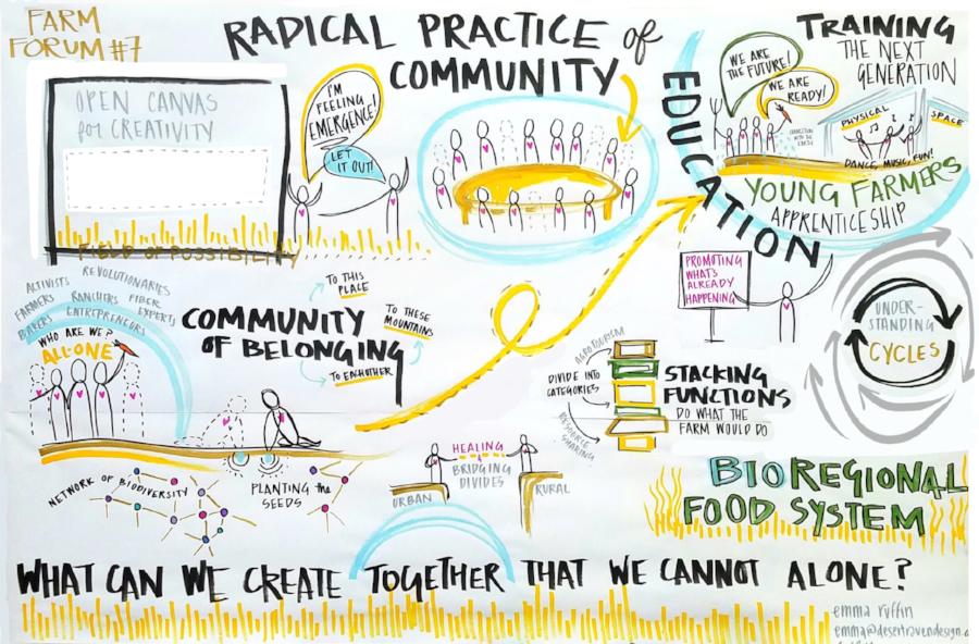 A visual representation of a Farm Forum conversation. Created simultaneously to the event by Emma Ruffin of  Desert Raven Design  through a process called visual scribing.