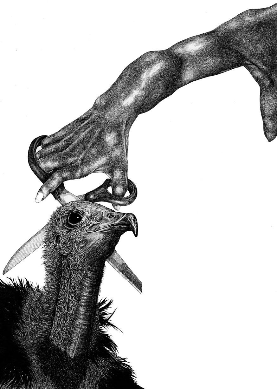 vulture-low.jpg