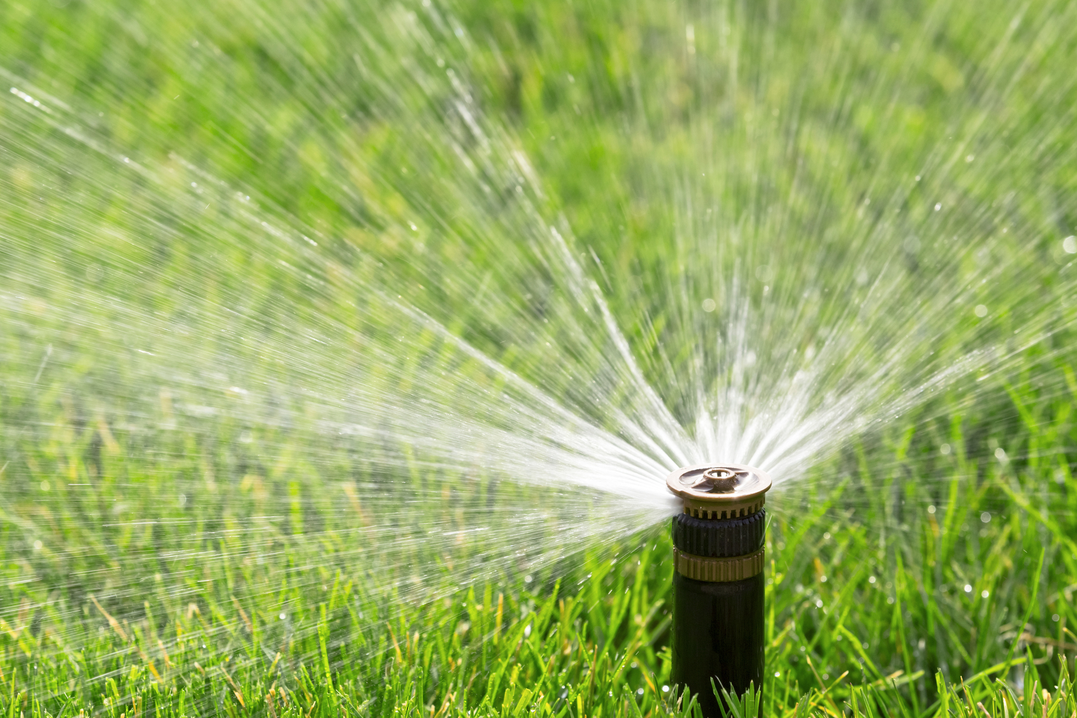Do you have an older sprinkler system in need of an overhaul? We work with customers who have systems that need to be serviced or completely re-done due to poor installation by their previous installer. -