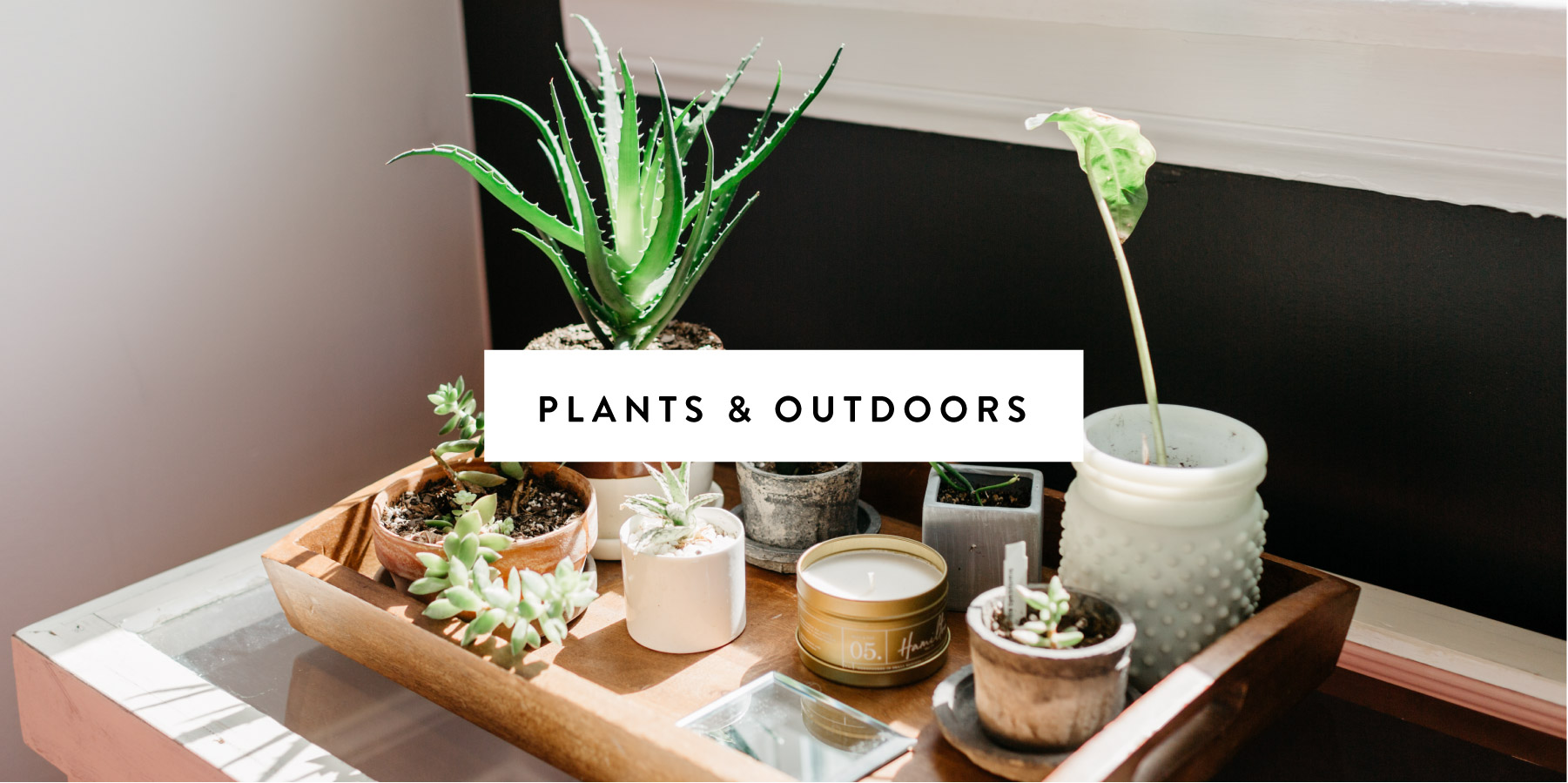 Plants & Outdoors-01.jpg