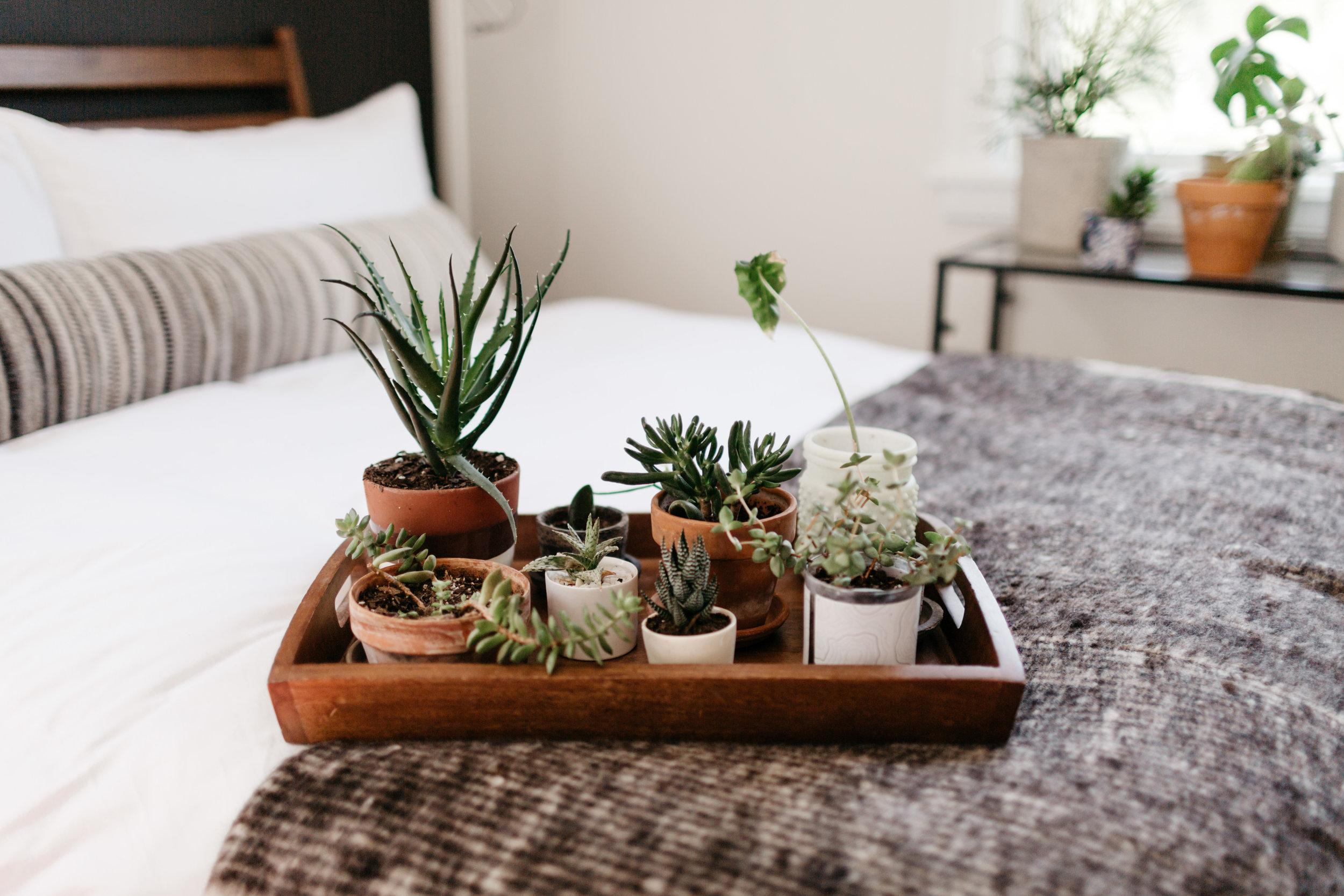 A Cozy Casa - April-140.jpg