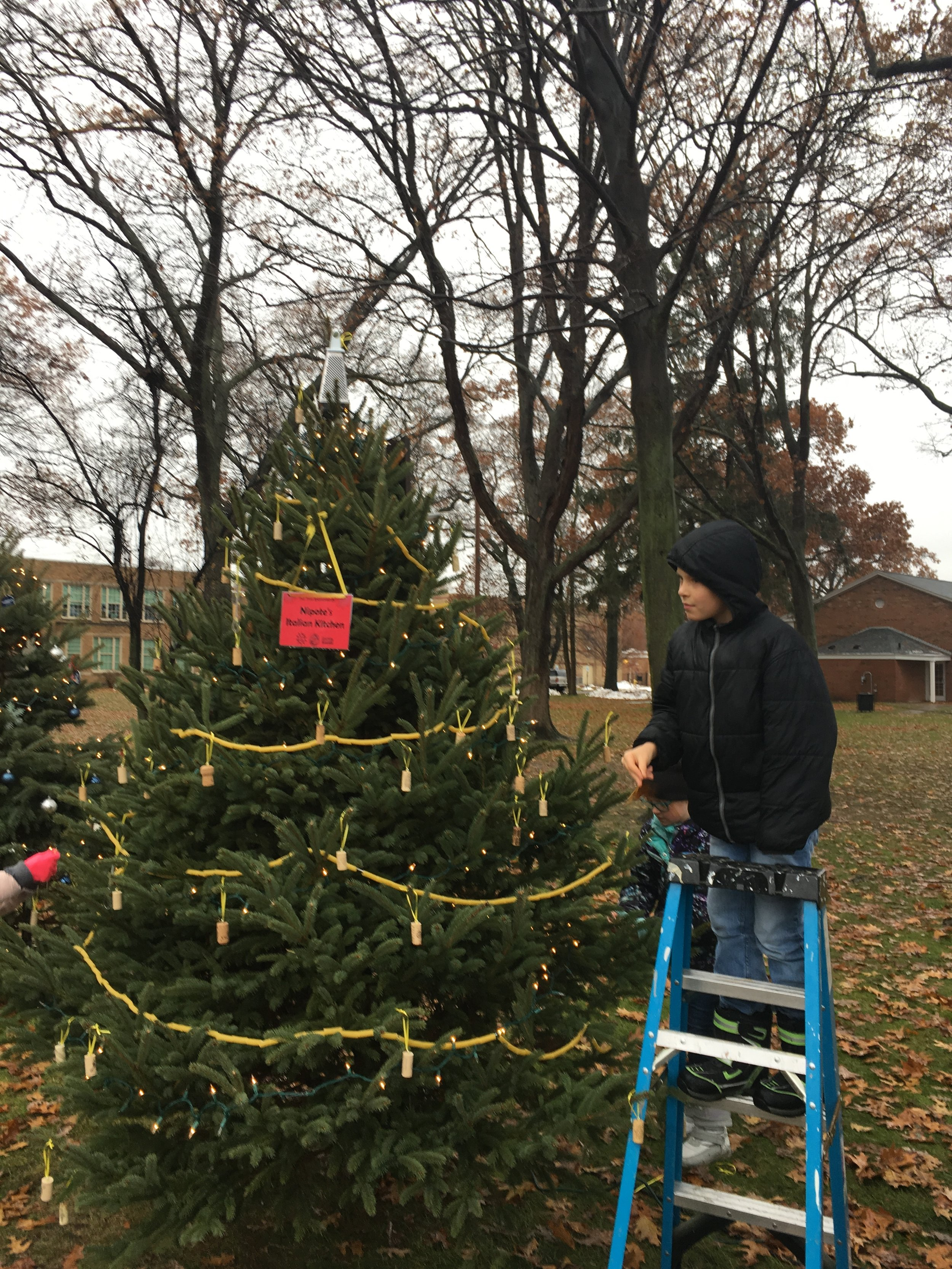Jeffrey Jr. is helping to trim the tree that we sponsored for the Circle of Trees.