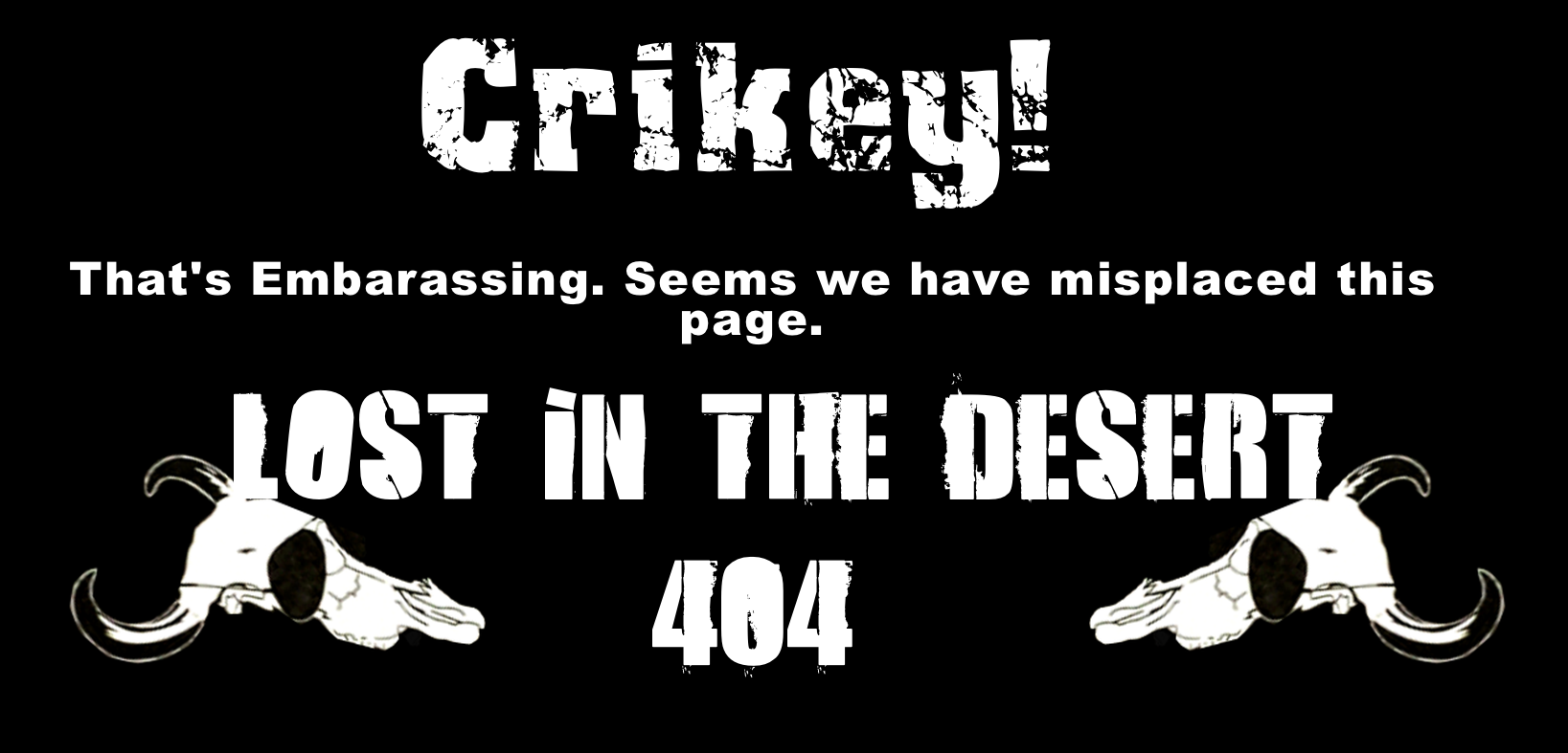 404img.png