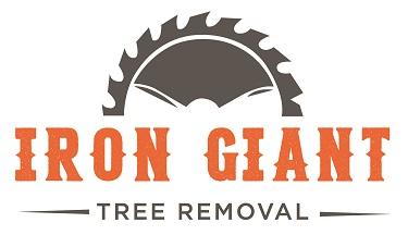Iron Giant_final logo_full color-01(0.25-kdk).jpg