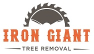 Iron Giant_final logo_full color-01(0.125-kdk).jpg