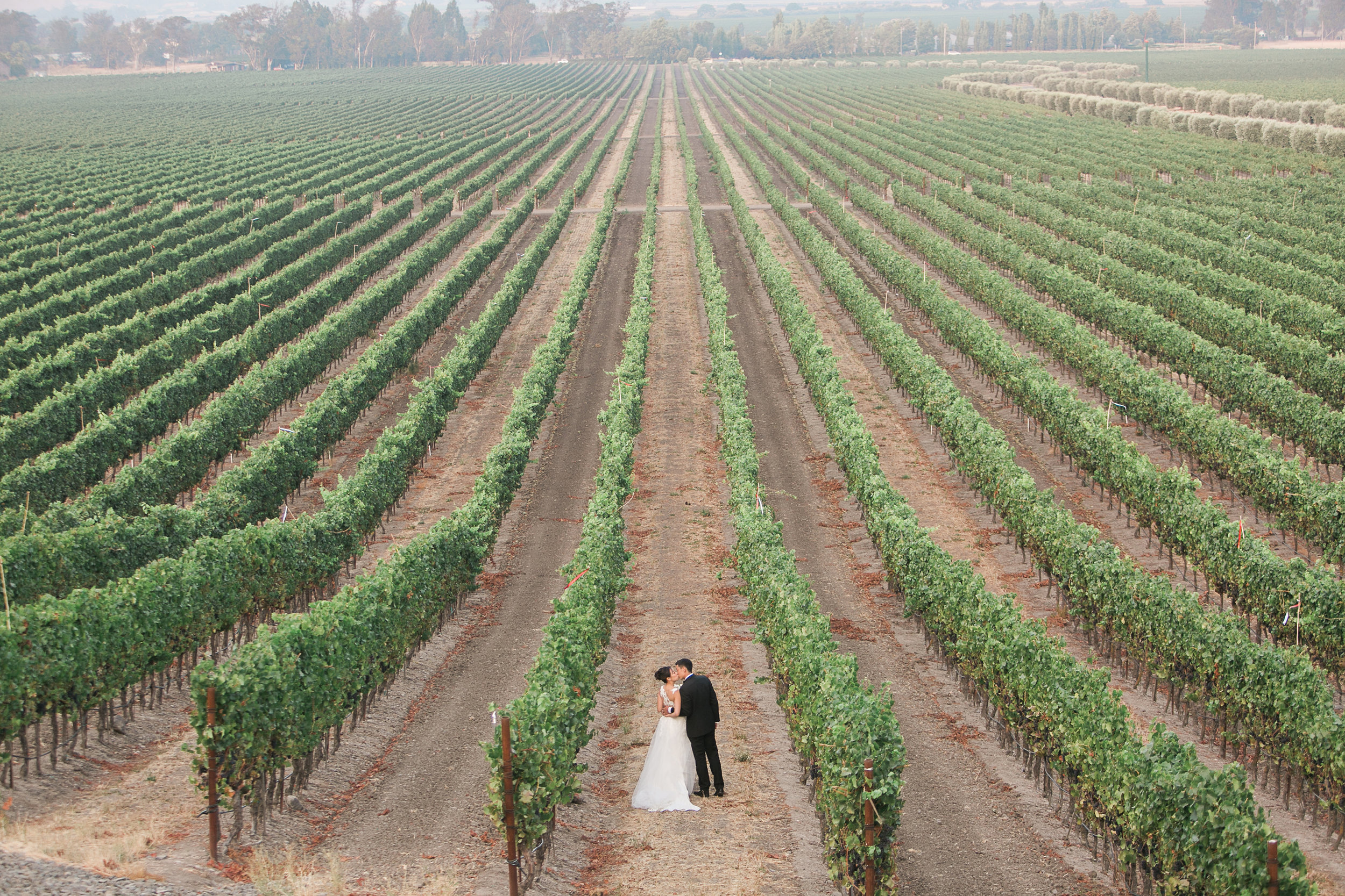 Gloria_Ferrer_Caves_Vineyard_Wedding_012.jpg