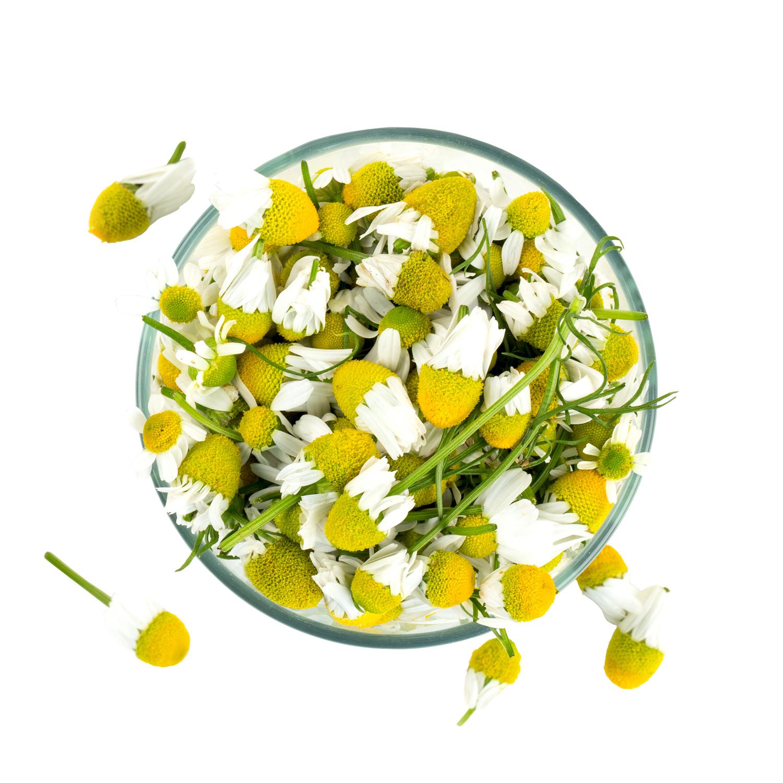 ingredient-chamomile.jpg