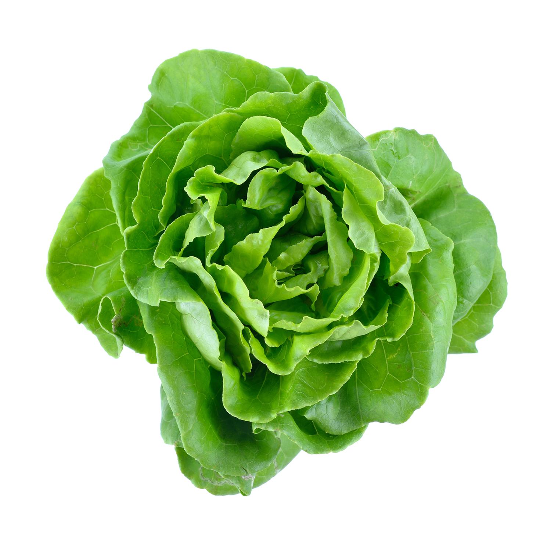 ingredient-sodium-hyaluronate-lettuce.jpg