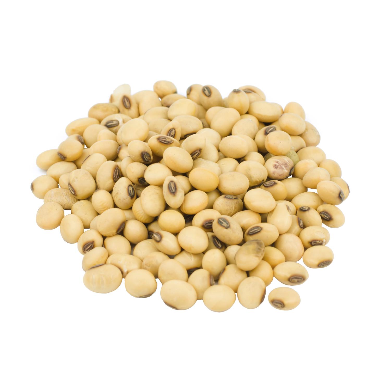 ingredient-coq10-soybeans.jpg