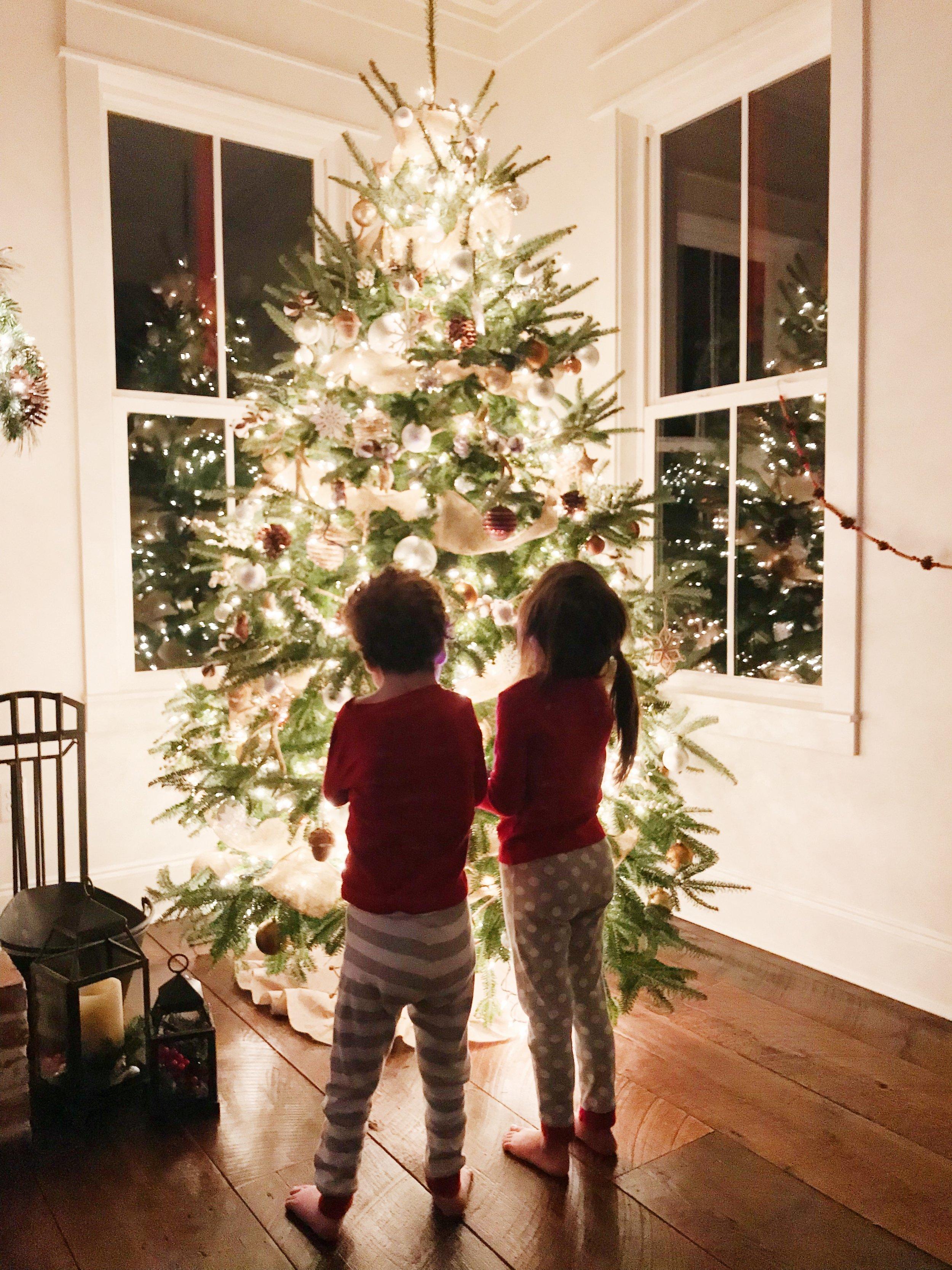 LouisianaFarmhouse Christmas 107.JPG