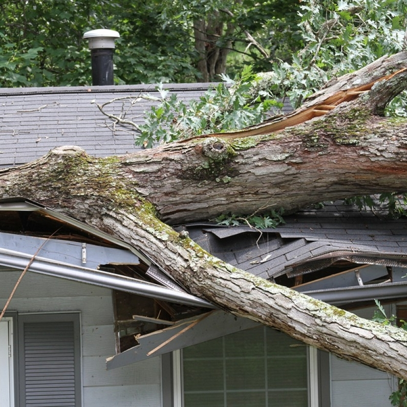 storm damage los angeles
