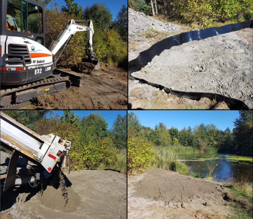 Nesting beach construction in a Metro Vancouver Regional Park.