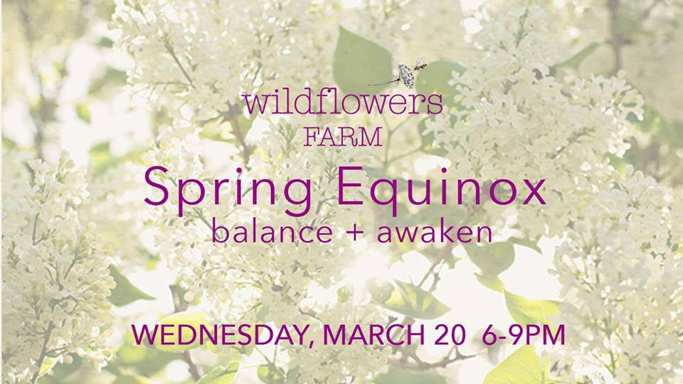 spring equinox at wildflowers farm.jpg