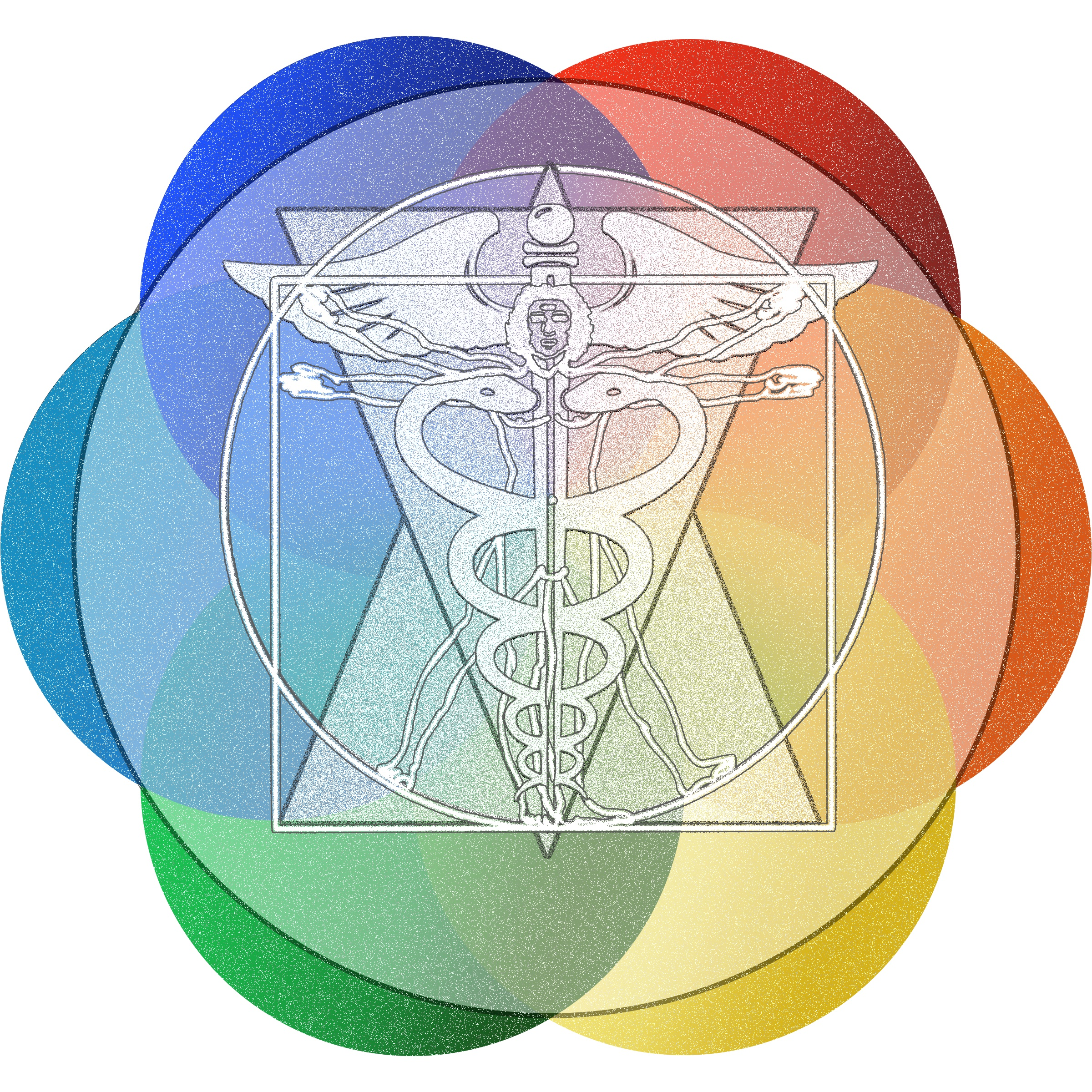 Transformation Medicine.jpg