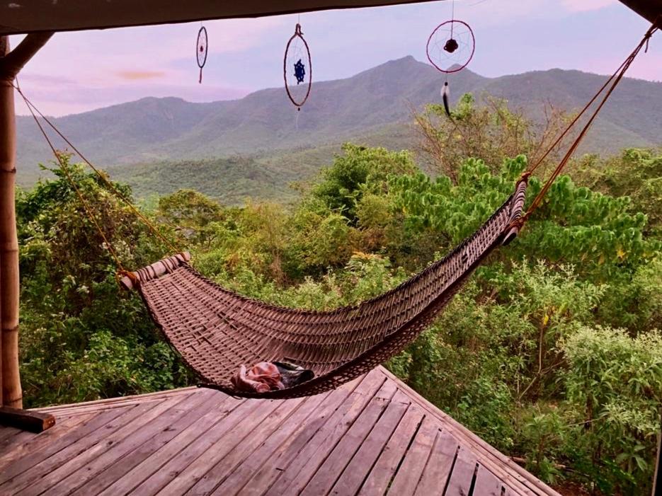 hammock1.jpg