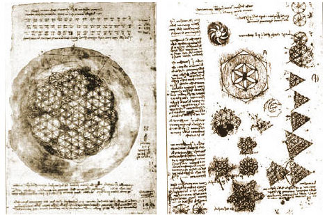 Sketches from Leonardo DaVinci who studied the Flower of Life in relation to body patterns, sequences and eventually the Vitruvian Man