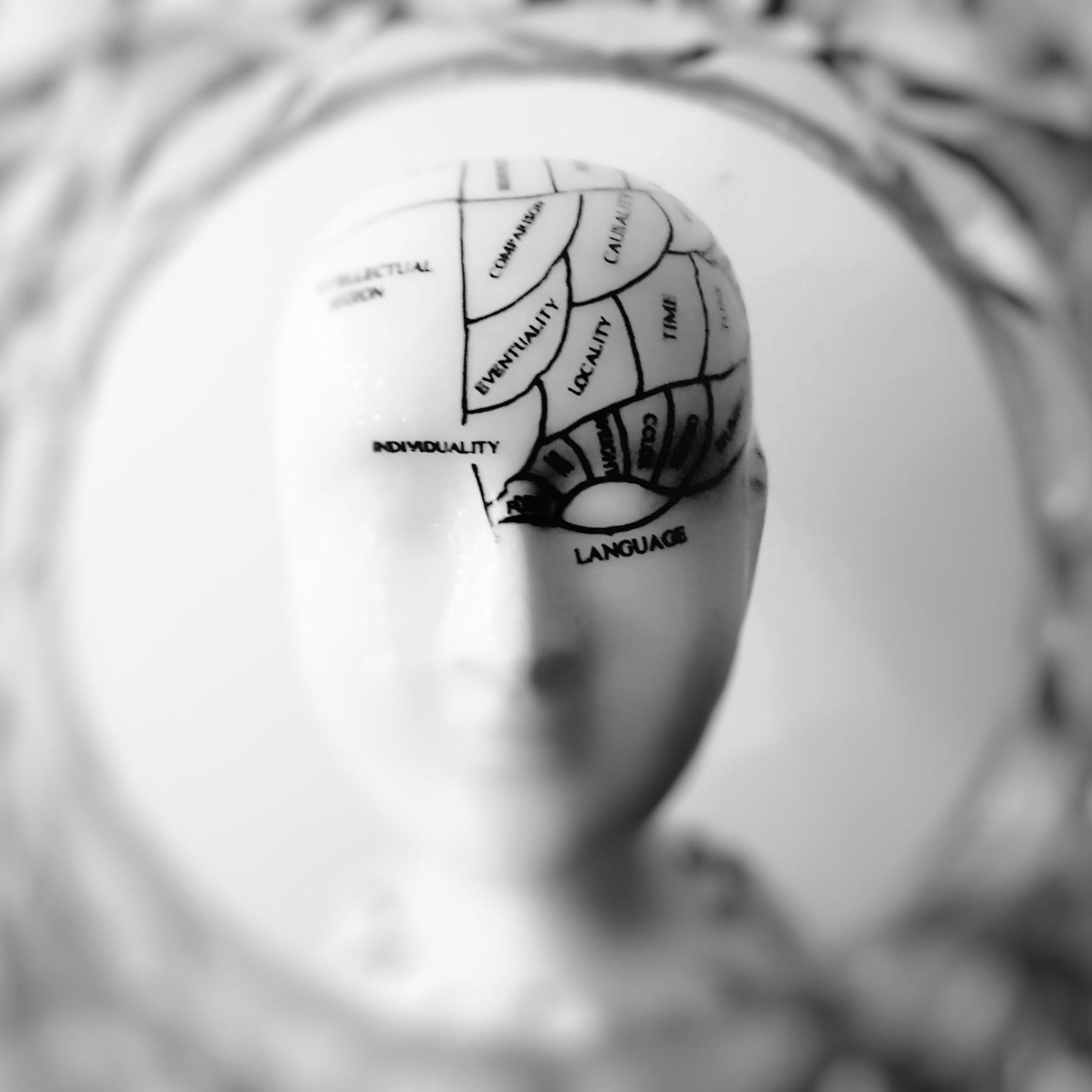 brain_head.jpg