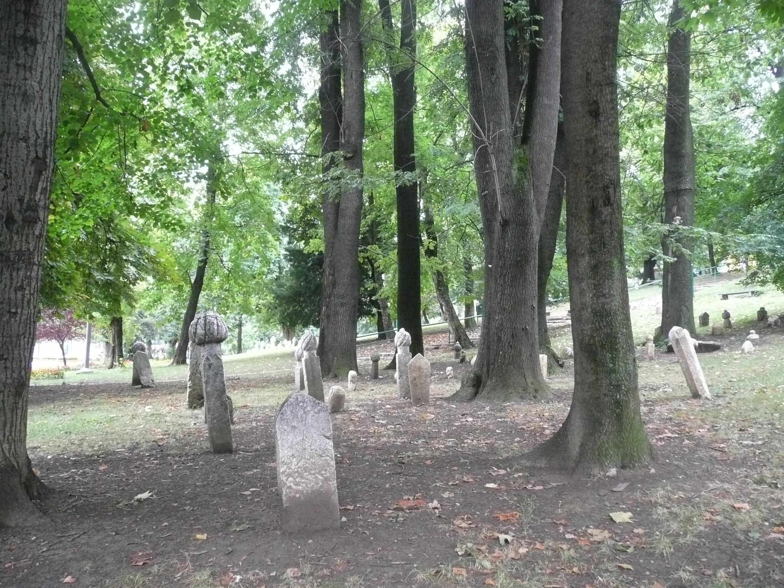 sarajevo-plus-038.jpg