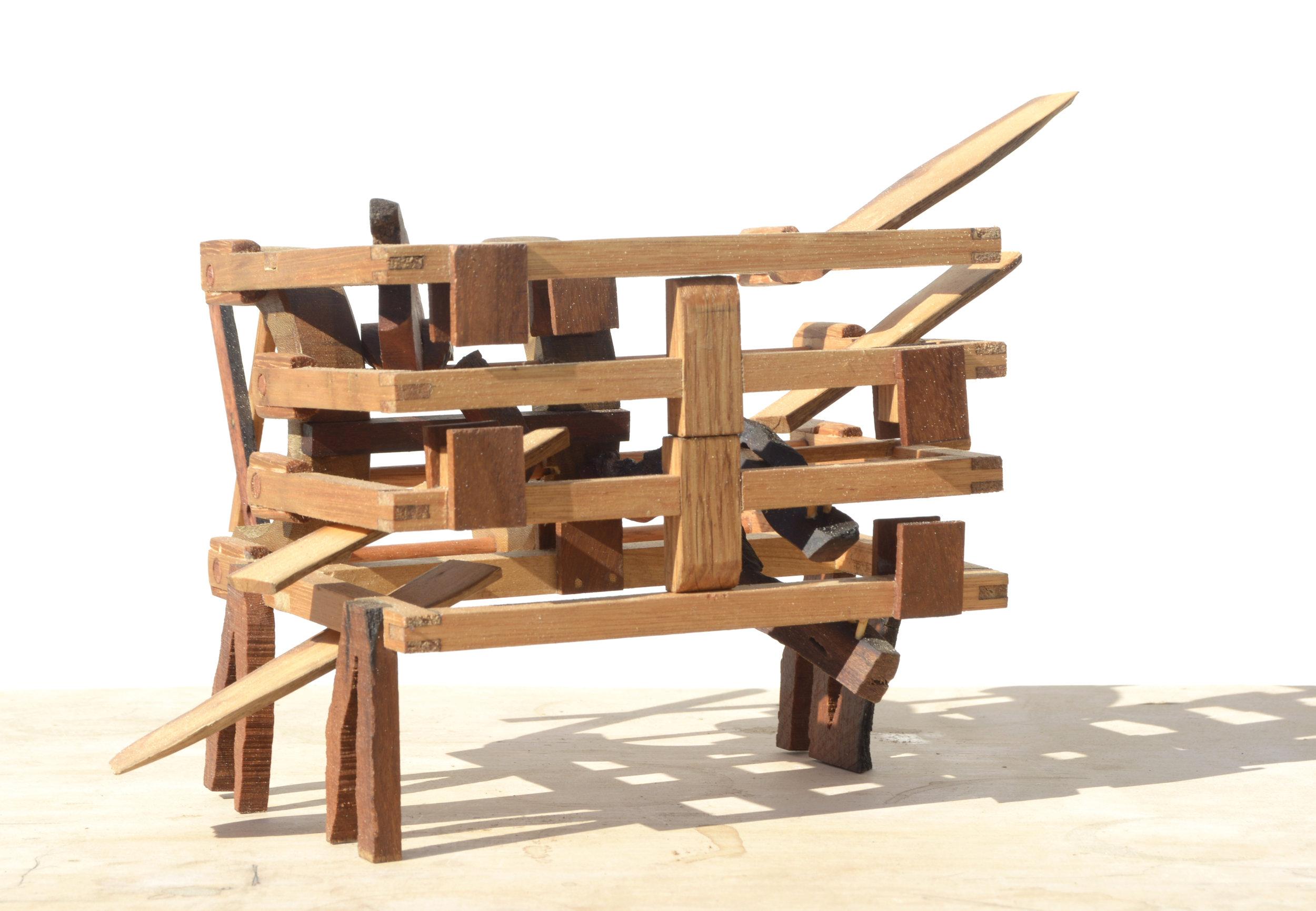 Biblio Phasmida - Allen Laing Artist Wood Sculpture