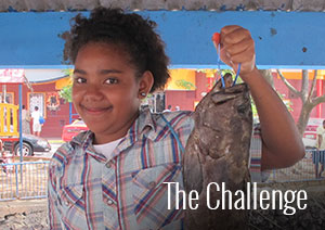 Homepage_Box_The-Challenge.jpg