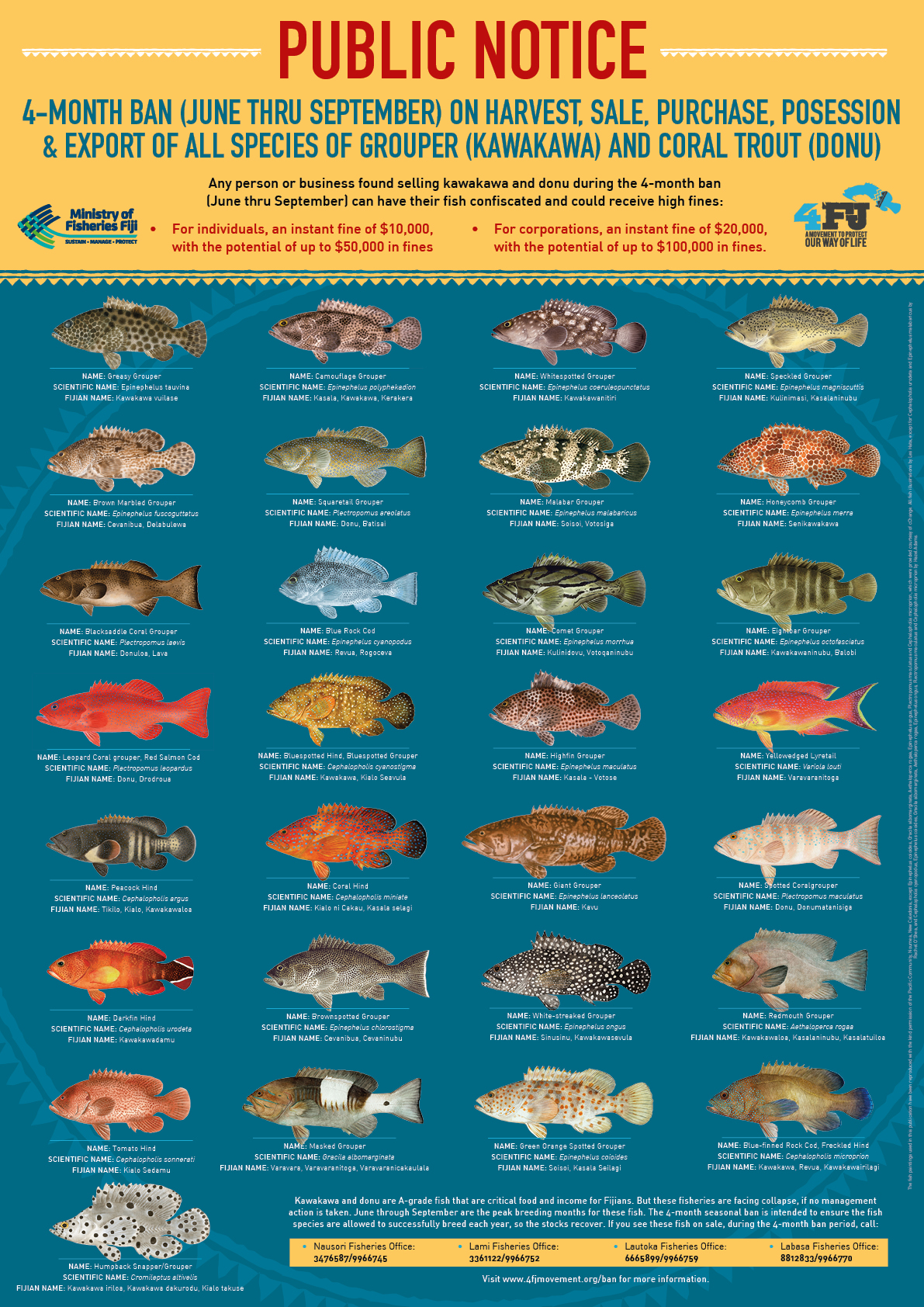 To download a printable version of outreach materials on the ban, click:  A4 Factsheet ;  A4 Fish Guide ; and  A2 Fish Poster . You can also contract your nearest Ministry of Fisheries Office for printed copies of these materials.
