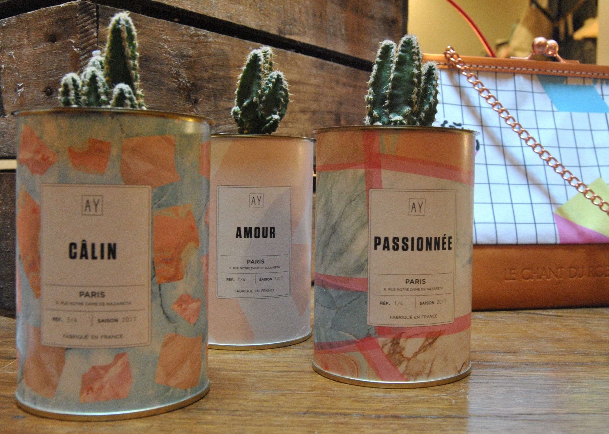 Tout droit débarqués de Paris, les AY Cactus sont le cadeau parfait pour les passionné(e)s de plantes et de déco.