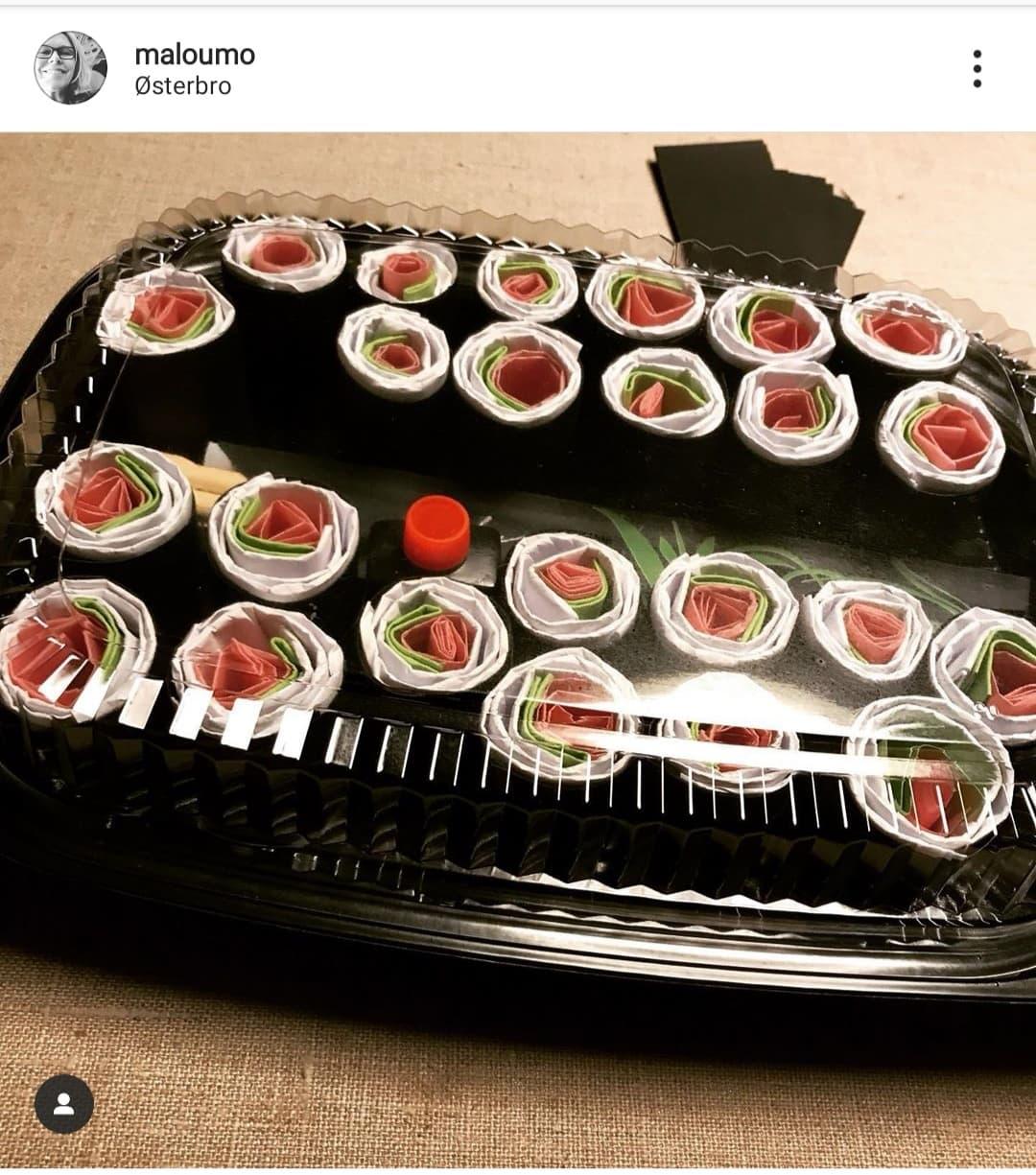 Kender du en sushi elsker? Så er dette den perfekte sangskjuler!