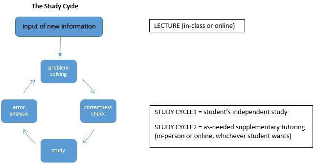 study cycle.jpg