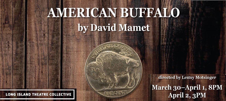 buffalo banner.jpg