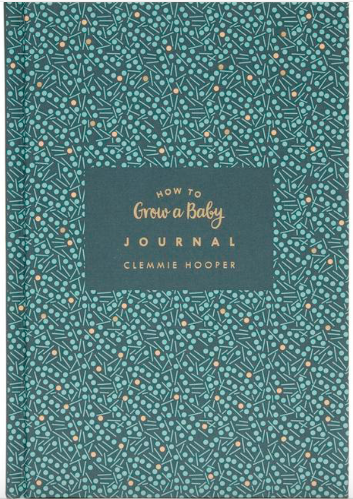 Clemmie's latest book - How to Grow a Baby Journal, £14.99 is available at Foyles.