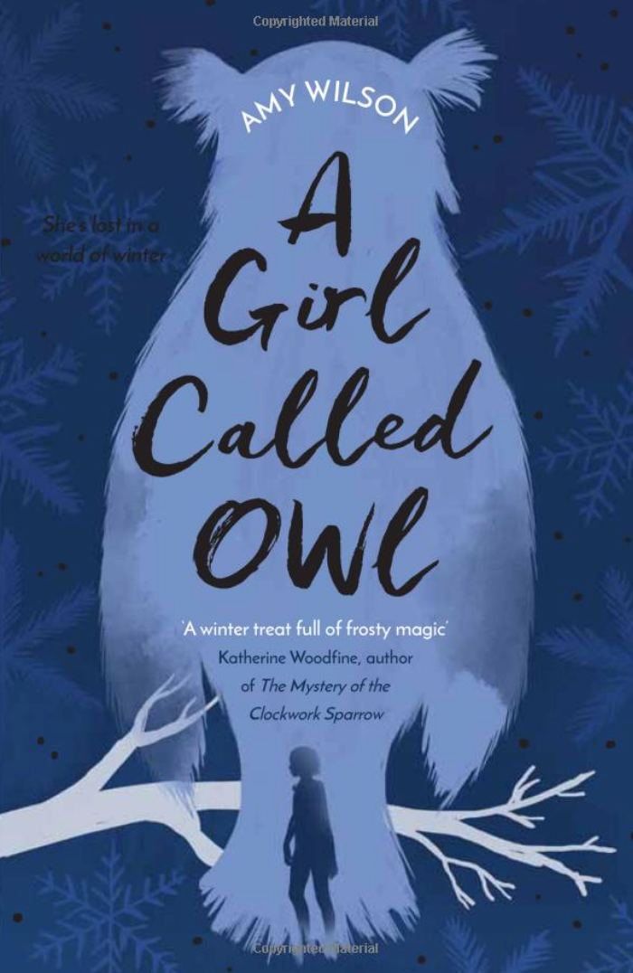 A Girl Called Owl byAmy Wilson - Thirteen-year old Owl has never met her father, and her mum is very mysterious when she asks about him. When Owl discovers strange frost patterns on her skin, she decides it's time to find out who he is. A strong female lead character who struggles with identity, friendships and an absent father - this is another book that borrows from old folklore and fairytales, bringing it to a modern setting. Again probably more towards the older age, so I'd say 10-12.