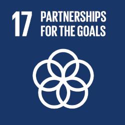 17 - Global Partnerships.png