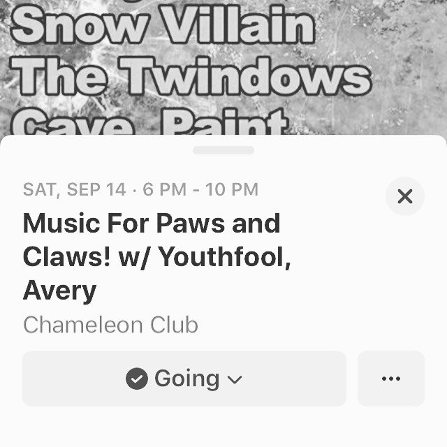 are you guys ready for unreleased music from our second album?? come see us at the chameleon club in LANCASTER PA on 9/14 !! see you there 👌🏻👌🏻👌🏻 || •{8.2.19}• . . . . . #snowvillain #sv #altrock #lancasterpa #pa #chameleonclub #lizardlounge #localband #garageband #indierock #alt #indie #youthfool #musicforpawsandclaws #avery #thetwindow #cavepaint