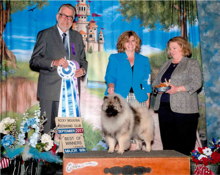 5 point major at the Rocky Mountain Keeshond specialty.